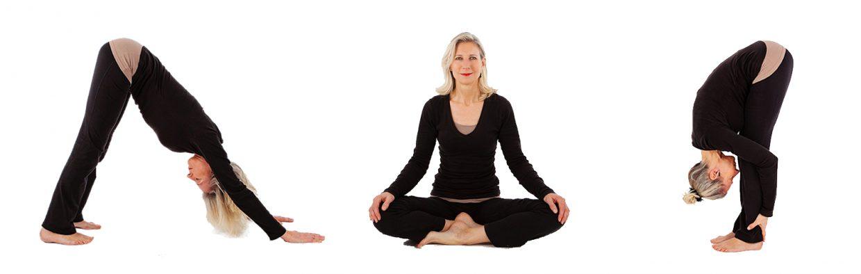 Hatha yoga Castricum waarom yoga